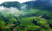 Khu sinh thái nghỉ dưỡng 2.000 tỷ đồng