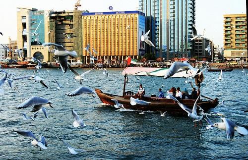Abra-Ride-Dubai-8632-1438481182.jpg