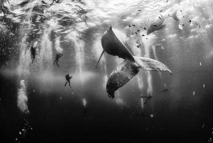 Những bức hình đẹp nhất cuộc thi ảnh du lịch của tạp chí Mỹ