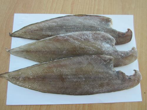 Cá lưỡi trâu kho mít non của người miền Trung