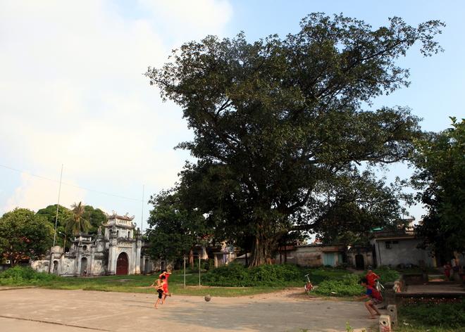 Không gian thanh tịnh trong chùa Bối Khê