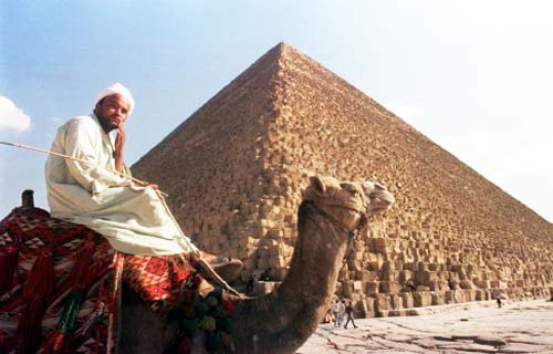 egypt-pyramid-party-cai102-6619-14424783