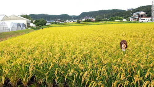 150918143220-japan-scarecrow-11-exlarge-