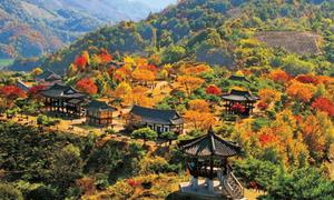 Độc giả nhận giải tuần cuối 'Hàn Quốc trong tôi'
