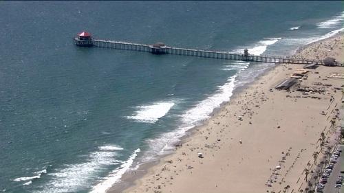 Mặc dù người ta chưa kết luận được loái cá mập nào đã cắn Eugene song vụ tai nạn này là một trong số nhiều vụ cá mập đầu búa tấn công du khách tại vùng biển bang California gần đây. (Ảnh: KTLA)
