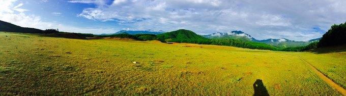 Hồ Hòa Trung – thảo nguyên cỏ vàng của Đà Nẵng
