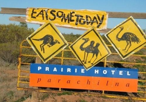 Tấm biển tại thị trấn Parachilna. Không có loài động vật nào sống trên dãy Flinders Ranges tránh khỏi bị lên đĩa; từ bít tết kangaroo, đà điểu phi lê, xúc xích lạc đà, người ta chế biến những món ăn đặc trưng này tại khách sạn Prairie thuộc thị trấn Parachilna, vùng Nam Úc. Và những đầu bếp luôn đảm bảo mọi thứ thịt luôn tươi sống chứ không phải lấy từ một con vật đáng thương nào bị xe tông phải.