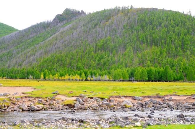 Mùa thu bình yên trên thảo nguyên Mông Cổ