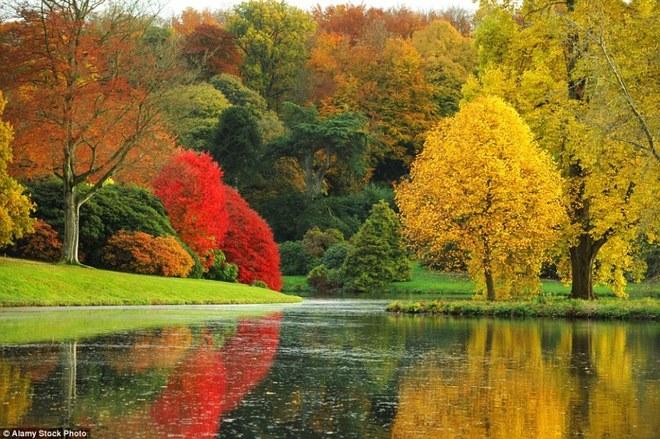 Cảnh đẹp mùa thu trên khắp Vương quốc Anh
