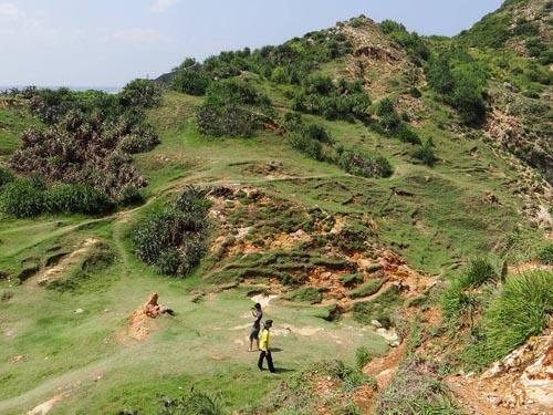 Những thảm cỏ xanh mướt trải dọc trên con đường mòn dẫn tới Eo Gió.
