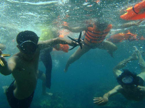 Du khách thích thú chiêm ngưỡng những rạn san hô ẩn mình dưới đáy biển.