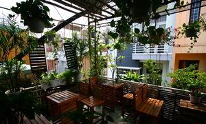 Quán cà phê trong hẻm nhỏ ở Đà Nẵng