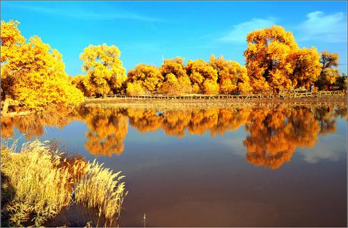 Những điểm thưởng ngoạn mùa thu ở Trung Quốc