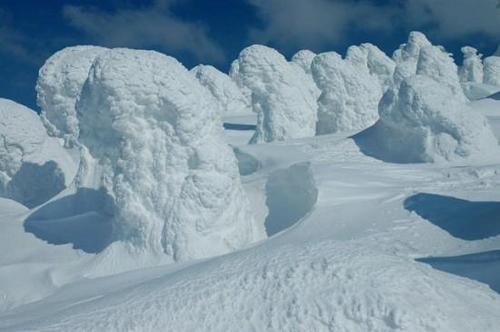 Tuyết quái vật xinh đẹp ở Nhật Bản