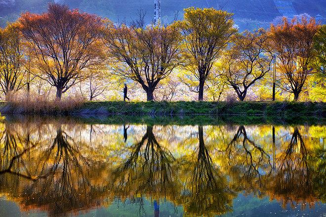 Tiên cảnh phản chiếu trên mặt nước ở Hàn Quốc