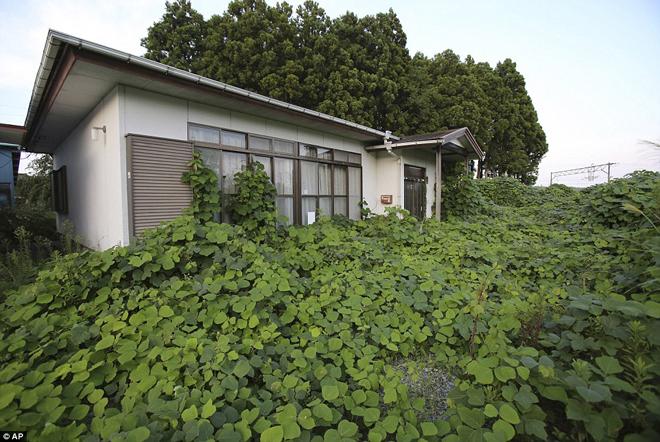 Cảnh hoang tàn Nhật Bản sau 4 năm động đất, sóng thần