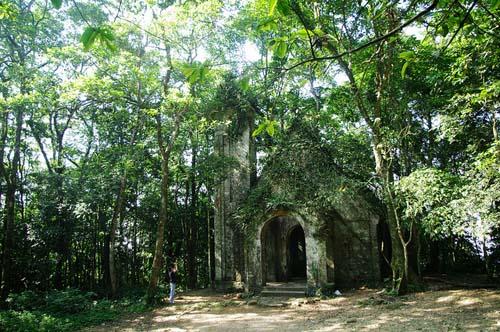 Những vườn quốc gia nổi tiếng đẹp của Việt Nam