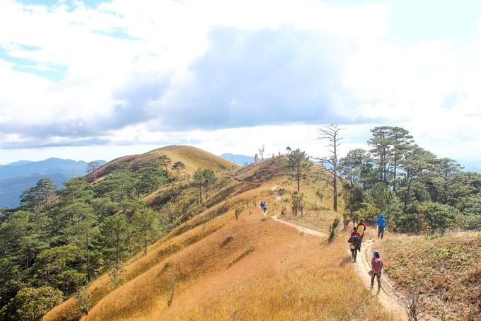 Hành trình khám phá đồi cỏ và rừng Tà Năng