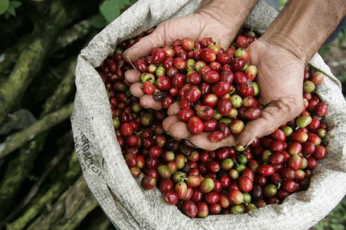 Cà phê Colombia. Colombia được xem như quê hương của những loại cà phê ngon nhất thế giới. Hầu hết mọi du khách khi đến đây đều không quên đem về một vài bịch cà phê làm quà tặng cho người thân. Thưởng thức cà phê mỗi sáng là thói quen đặc trưng của người dân đất nước này. Ảnh: Rochkind