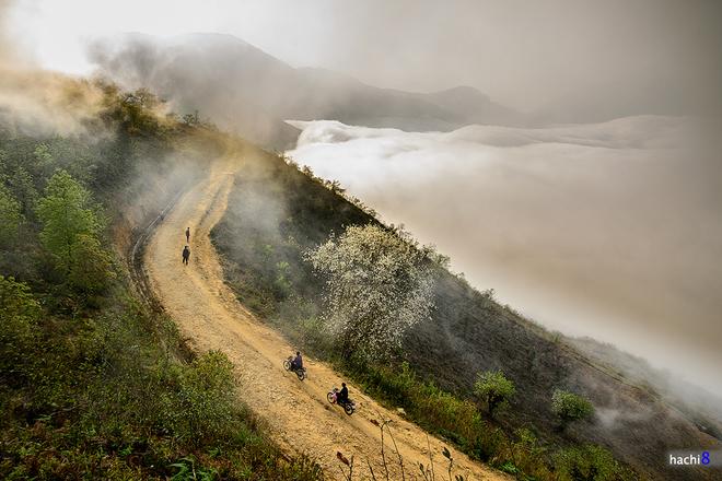 Ngải Thầu (Bát Xát, Lào Cai) là nơi thích hợp để bạn đi phượt