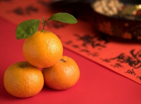 5. Cam, quýt Màu vàng và vẻ ngoài tròn đầy đặn của những trái cây như cam, quýt được coi là biểu tượng cho sự phồn thịnh và may mắn cho người Trung Quốc. Hơn thế nữa, từ quýt trong tiếng Trung đồng âm với từ vàng, nên ăn quýt trong dịp đầu năm được coi là sẽ mang đến cho mọi người nhiều tài lộc hơn trong năm mới.