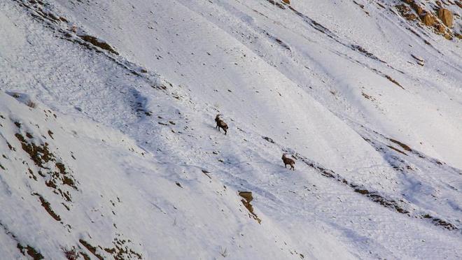 Con đường chỉ xuất hiện vào mùa đông ở himalaya - 10