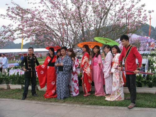 co-hoi-mac-kimono-chup-anh-voi-hoa-anh-dao-o-ha-long