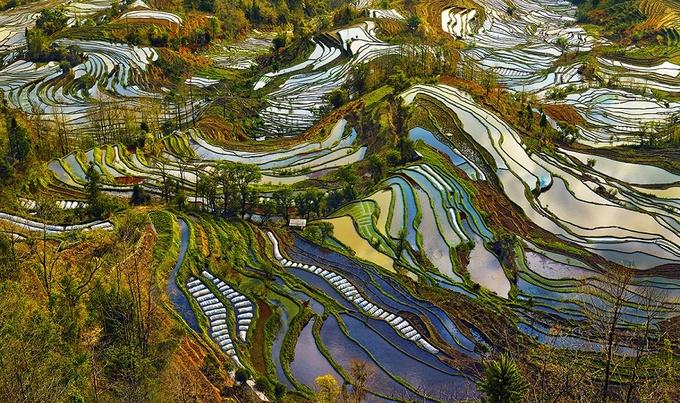 Di sản ruộng bậc thang Trung Quốc hớp hồn nhiếp ảnh gia Pháp