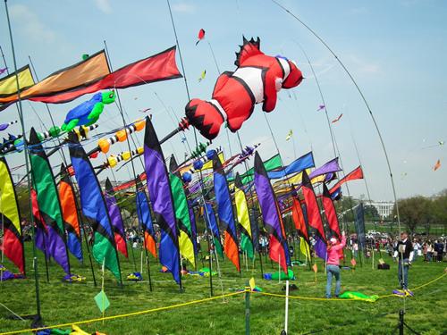 Người xem sẽ được chứng kiến màn trình diễn trên không đầy  màu sắc của hơn 500 chiếc diều.