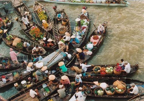 Tại Việt Nam, chợ nổi lớn nhất đồng bằng sông Cửu Long là Phụng Hiệp, với hàng trăm thuyền bè mua bán tấp nập. Chợ nổi Cái Bè, Cái Răng cũng là những địa điểm nổi tiếng khác ở khu vực miền Tây.