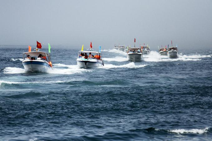 Gần 50 canô diễu hành trên biển Cù Lao Chàm