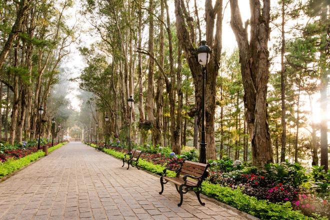 Khuôn viên thơ mộng trong dinh vua cuối cùng Việt Nam