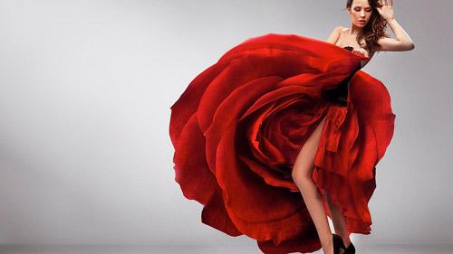 thong-diep-dang-sau-cu-giam-got-giay-trong-dieu-flamenco