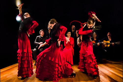 thong-diep-dang-sau-cu-giam-got-giay-trong-dieu-flamenco-1