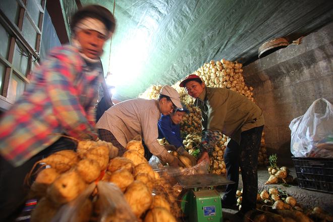 Chợ đầu mối hoa quả nổi tiếng nhất hà nội
