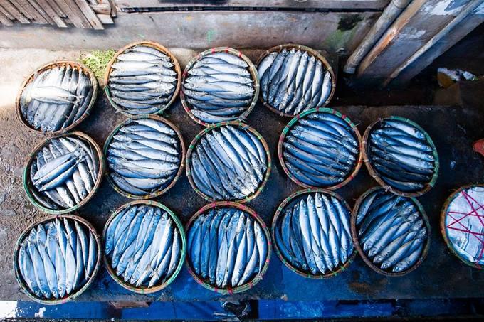 Làng nghề hấp cá ở Quy Nhơn