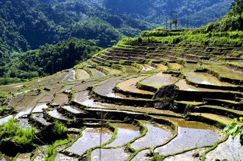 phuot-pu-luong-chuyen-di-lieu-linh-va-dang-nho-nhat-doi