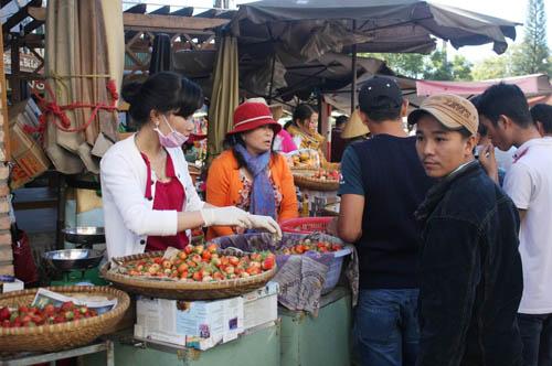 Dâu tây là đặc sản Đà Lạt được nhiều du khách ưa chuộng