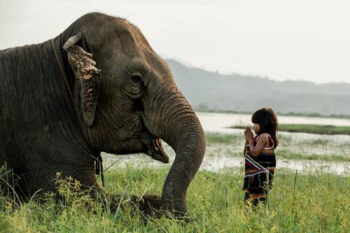 Cơ duyên giữa cô bé Chăm mắt xanh và nhiếp ảnh gia Pháp