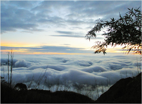 Du khách như lạc vào biển mây khi đi trên đường tới đỉnh Fansipan.
