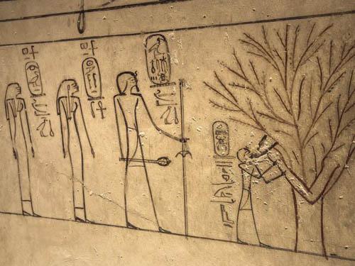 nhung-buc-anh-hiem-hoi-ben-trong-lang-mo-pharaoh-o-ai-cap-7