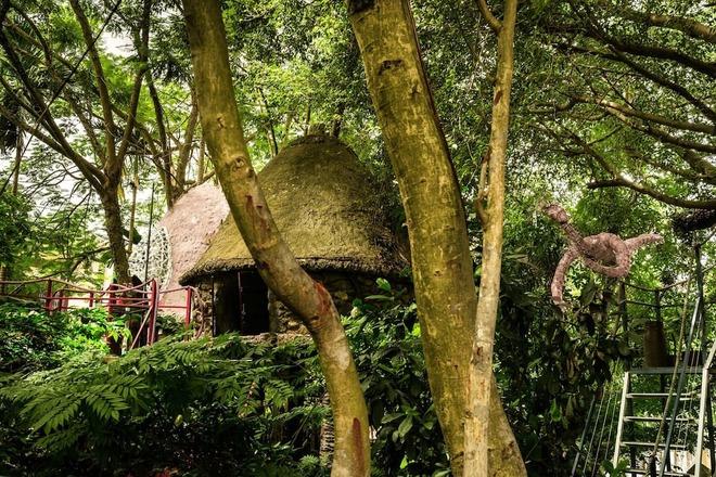 Homestay trên cây ở ngoại thành Hà Nội