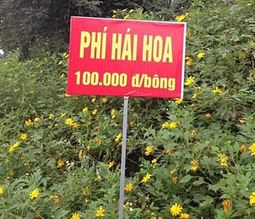 su-that-ve-phi-hai-hoa-da-quy-100000-dong-o-ba-vi