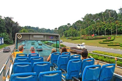 Hop-on Hop off là tuyến xe buýt phục vụ khách tham quan thành phố phổ biến ở nhiều nơi trên thế giới. Ảnh: Freedom Wall