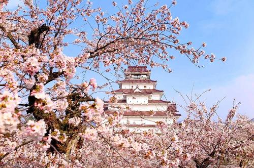 Du xuân Nhật Bản theo cung đường mới