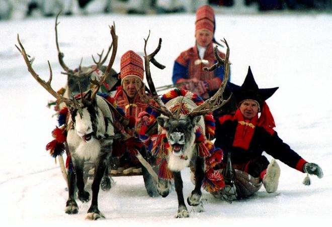 Bộ tộc chăn nuôi tuần lộc tại châu Âu