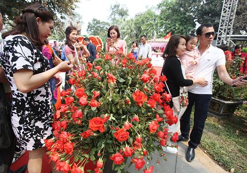 3 lễ hội hoa khiến du khách thất vọng dù chen chúc vào cổng - 1