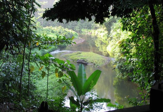 Di sản rừng mưa nhiệt đới đảo Sumatra, Indonesia: Bao gồm 3 công viên quốc gia với tổng diện tích hơn 2 triệu ha, đây là nơi có thảm thực vật, động vật rất đa dạng: 10.000 loài thực vật, 201 loài động vật có vú và hơn 550 loài chim. Cảnh quan thiên nhiên tuyệt đẹp với các hang động, thác nước, hồ băng và núi lửa cùng hàng nghìn loài động vật như hổ, voi... Ảnh: UNESCO.