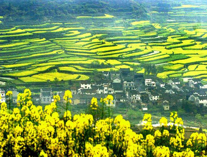 10 điểm tới ngắm 'trăm hoa khoe sắc' ở Trung Quốc