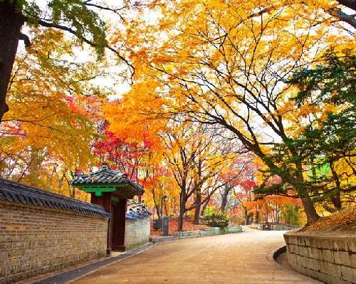 tour-he-han-quoc-nhat-ban-uu-dai-den-3-trieu-dong